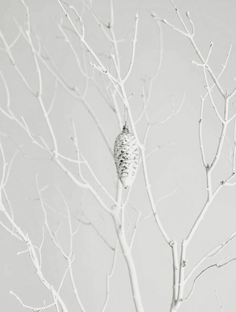 white branches 460 michelle wentworth